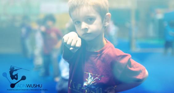 clases de kung fu en madrid